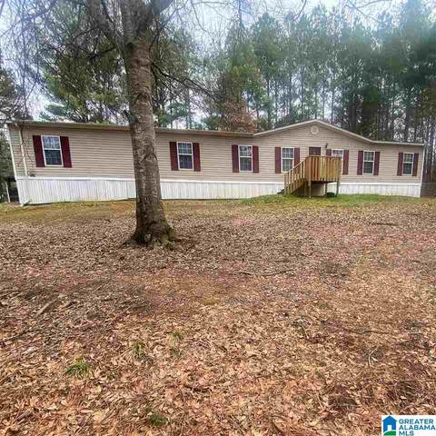 3672 Spunky Hollow Rd, Remlap, AL 35133 (MLS #1277684) :: Howard Whatley
