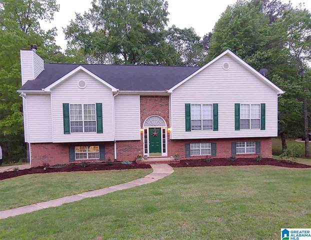 319 Hunter Hills Cir, Chelsea, AL 35043 (MLS #1277890) :: The Fred Smith Group | RealtySouth