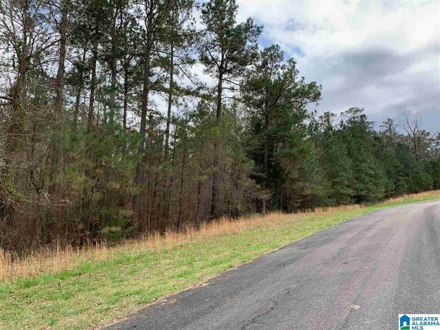 0 Long Point Rd 156/157, Double Springs, AL 35553 (MLS #1277902) :: Sargent McDonald Team