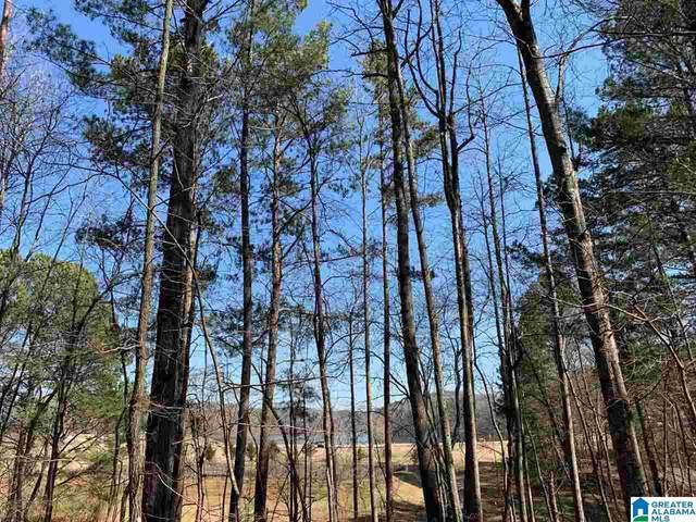 Mountain St 1.06 Acres, Heflin, AL 36264 (MLS #1277917) :: Josh Vernon Group