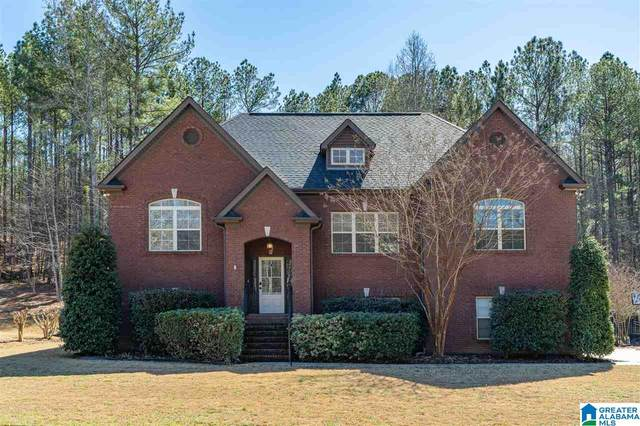 3291 River Birch Trl, Chelsea, AL 35043 (MLS #1278039) :: Lux Home Group