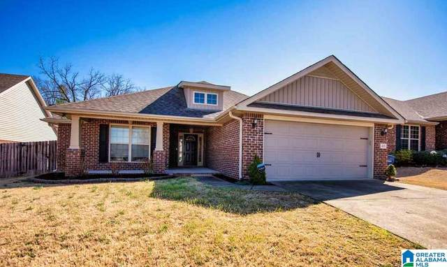 408 Rock View Trl, Alabaster, AL 35114 (MLS #1278081) :: Lux Home Group