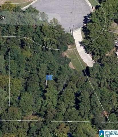 203 Norwick Forest Drive 1/6, Alabaster, AL 35007 (MLS #1278214) :: Sargent McDonald Team
