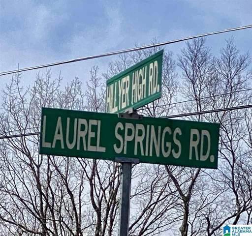 0 Laurel Springs Rd 11&12, Anniston, AL 36207 (MLS #1278343) :: Howard Whatley
