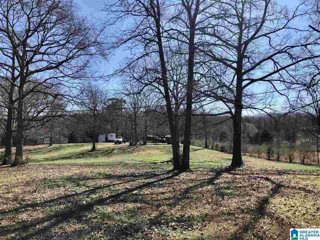 39 Chickasaw St 22,21 &1.001, Springville, AL 35146 (MLS #1278478) :: LocAL Realty