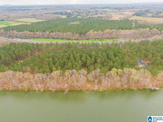 651 Liberty Shores Boulevard 9A, Vincent, AL 35178 (MLS #1279396) :: Josh Vernon Group