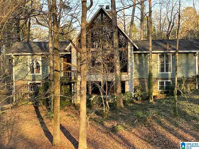 66 Skyview Cir, Trafford, AL 35172 (MLS #1279430) :: Gusty Gulas Group