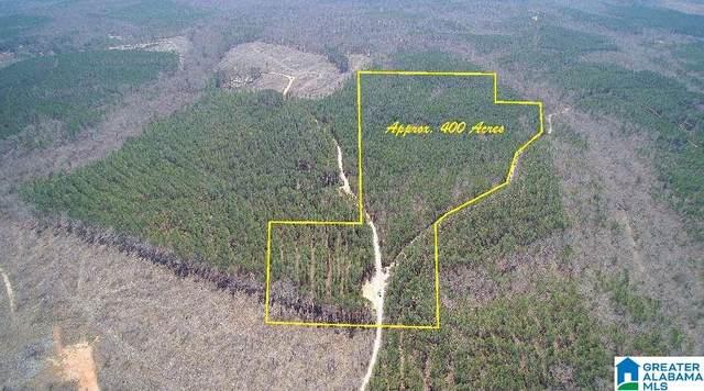 0 Co Rd 465 400 Acres, Roanoke, AL 36274 (MLS #1279582) :: JWRE Powered by JPAR Coast & County