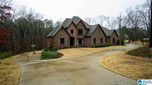 312 Logos Trace, Alabaster, AL 35007 (MLS #1279668) :: Bentley Drozdowicz Group