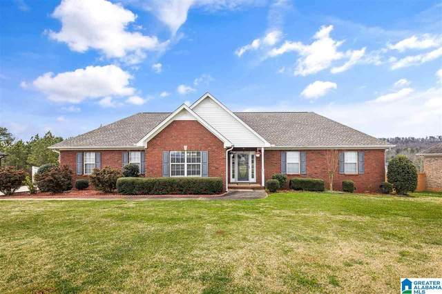 820 Ransome Dr, Oneonta, AL 35121 (MLS #1279675) :: Amanda Howard Sotheby's International Realty