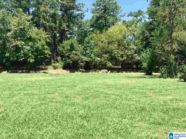 45 Royal Coach Cir #4, Bessemer, AL 35022 (MLS #1279884) :: LIST Birmingham