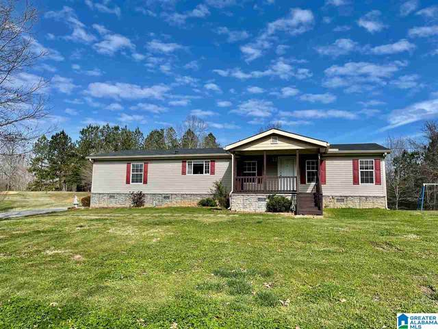 259 Mountain Terr, Odenville, AL 35120 (MLS #1279977) :: JWRE Powered by JPAR Coast & County