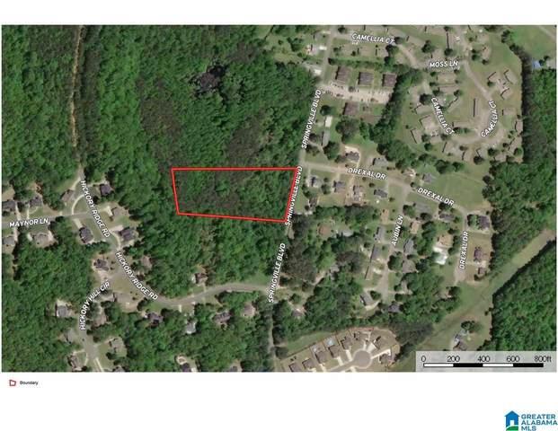 0 Springville Blvd 4+/- Acres, Oneonta, AL 35121 (MLS #1280114) :: Josh Vernon Group