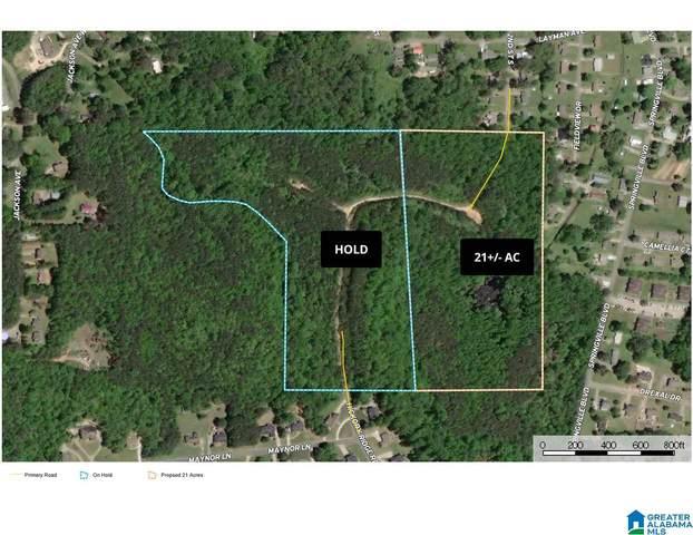 0 2ND ST S 21+/- Acres, Oneonta, AL 35121 (MLS #1280118) :: Josh Vernon Group