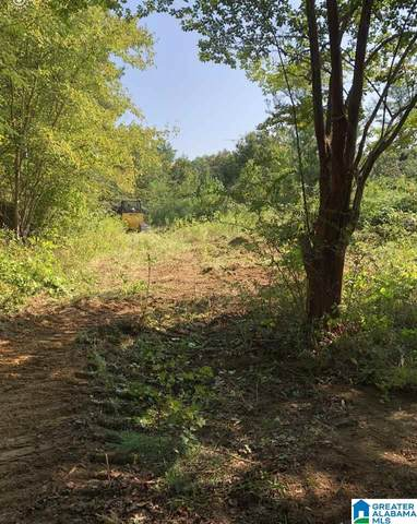 11731 Hwy 9 13 Acres -+, Piedmont, AL 36272 (MLS #1280232) :: Bailey Real Estate Group