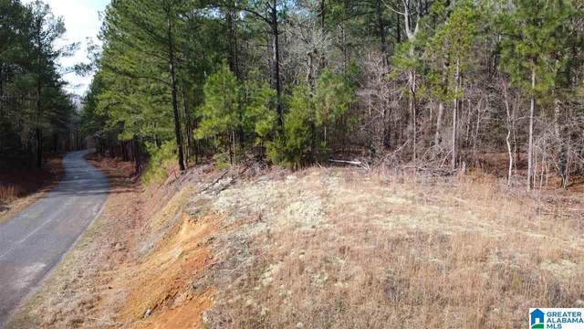 Landmark Road #0, Talladega, AL 35160 (MLS #1280737) :: Bailey Real Estate Group