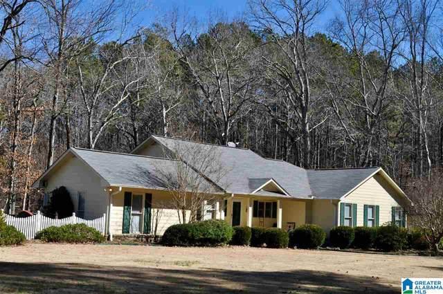 154 County Road 343, Crane Hill, AL 35053 (MLS #1280894) :: Josh Vernon Group