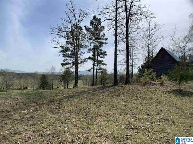 0 County Road 1021 #0, Piedmont, AL 36272 (MLS #1280972) :: Bentley Drozdowicz Group