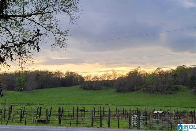 2182 Pitt Road 74 Acres, Blountsville, AL 35031 (MLS #1280993) :: Josh Vernon Group