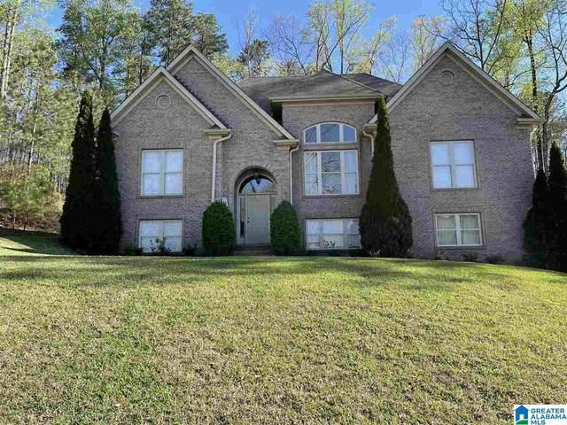 333 Deer Ridge Lane, Chelsea, AL 35043 (MLS #1281198) :: Lux Home Group