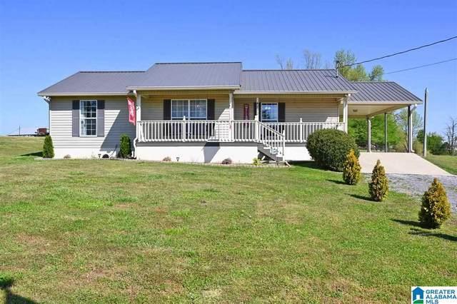 4222 County Road 747, Cullman, AL 35055 (MLS #1281328) :: Josh Vernon Group