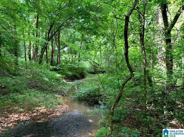 Store Road 40 Acres, Ashland, AL 36251 (MLS #1281735) :: Howard Whatley