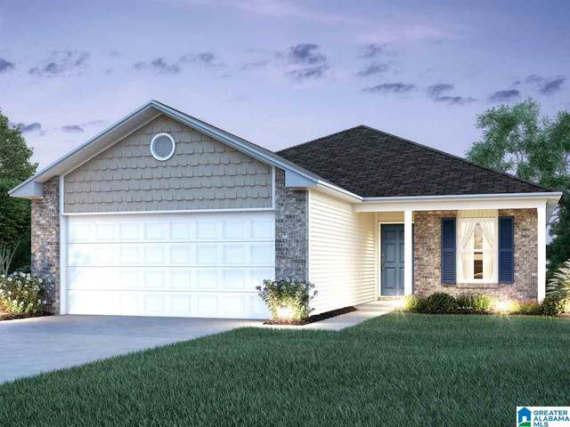 980 Brookhaven Drive, Odenville, AL 35120 (MLS #1281757) :: Josh Vernon Group