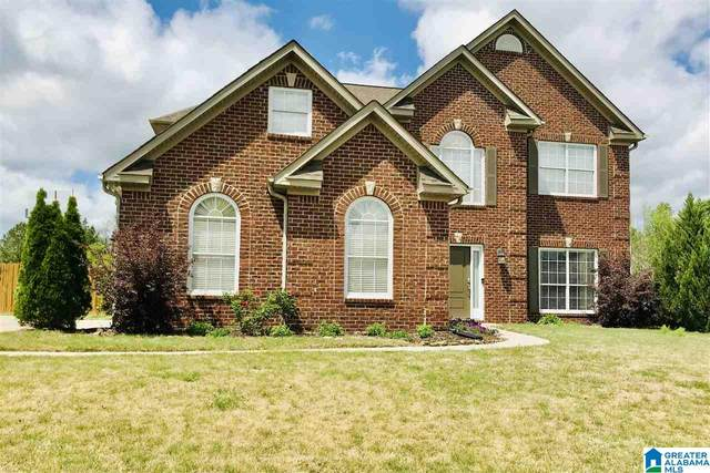 970 Old Cahaba Drive, Helena, AL 35080 (MLS #1281839) :: Lux Home Group