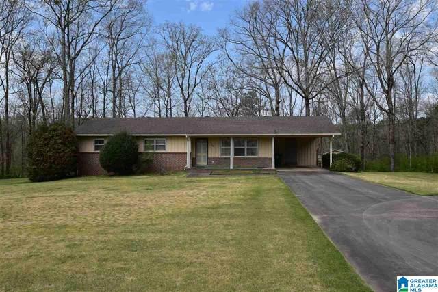 343 County Road 1177, Cullman, AL 35057 (MLS #1281881) :: Josh Vernon Group