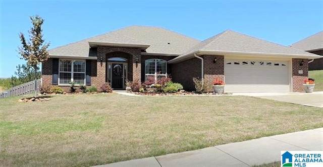 255 Waterford Cove Trail, Calera, AL 35040 (MLS #1281993) :: Lux Home Group