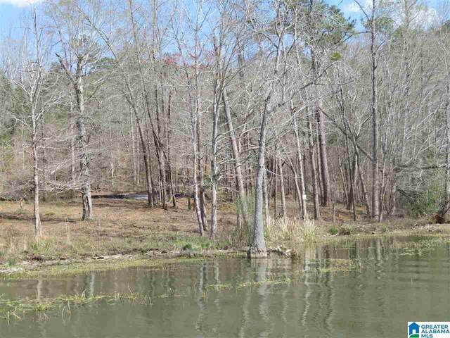 Lot 15 Eagle Point Trace #15, Rockford, AL 35136 (MLS #1281994) :: Josh Vernon Group