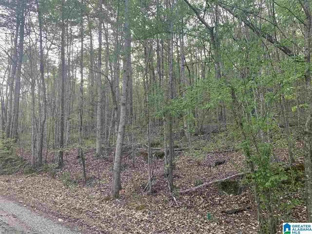 0 John Owens Road 1 Acre, Trussville, AL 35173 (MLS #1282104) :: Howard Whatley