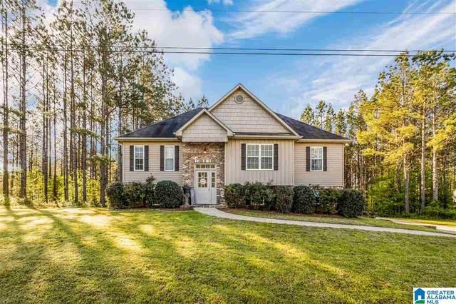 895 Magnolia Crest Lane, Odenville, AL 35120 (MLS #1282123) :: Bailey Real Estate Group
