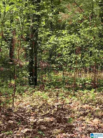 Cove Drive Lot, Wilsonville, AL 35186 (MLS #1282129) :: Bailey Real Estate Group