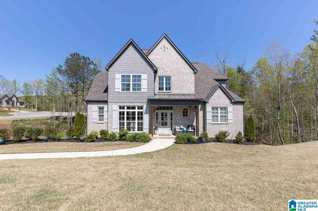 181 Willow Branch Lane, Chelsea, AL 35043 (MLS #1282198) :: The Natasha OKonski Team