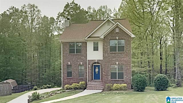 168 Hunter Hills Drive, Chelsea, AL 35043 (MLS #1282242) :: The Natasha OKonski Team