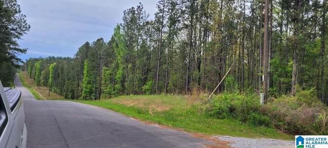 228 Paradise Point Drive -, Columbiana, AL 35051 (MLS #1282538) :: The Natasha OKonski Team