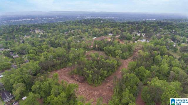 Lot 9 Chandler Way #9, Hoover, AL 35226 (MLS #1282664) :: Amanda Howard Sotheby's International Realty