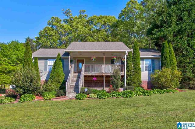 1138 Champion Road, Oneonta, AL 35133 (MLS #1282857) :: The Fred Smith Group | RealtySouth