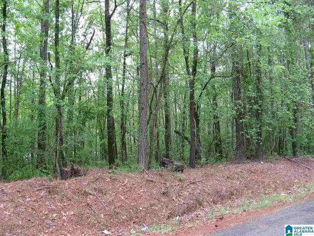 1 Zubers Road #.004, Sylacauga, AL 35150 (MLS #1282901) :: The Fred Smith Group | RealtySouth