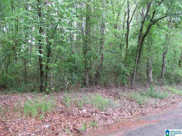 2 Zubers Road #.001, Sylacauga, AL 35150 (MLS #1282903) :: The Fred Smith Group | RealtySouth