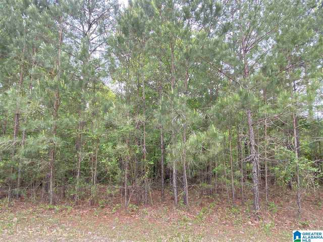 109 Clearview Road #15, Odenville, AL 35120 (MLS #1283054) :: Gusty Gulas Group