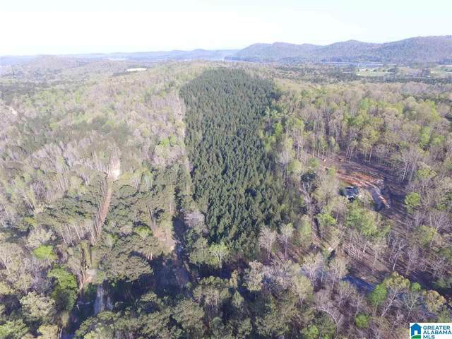 0 Colvin Springs Road 25.7 Acres, Ashville, AL 35953 (MLS #1283097) :: The Fred Smith Group | RealtySouth
