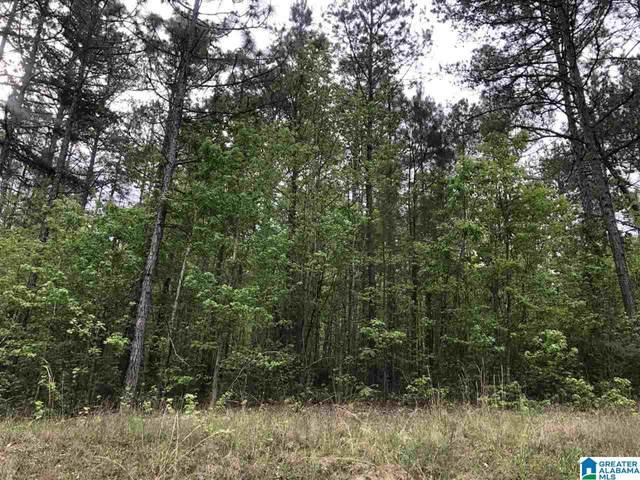 0 Piney Woods Road 67 Acres, Vincent, AL 35178 (MLS #1283277) :: Bentley Drozdowicz Group
