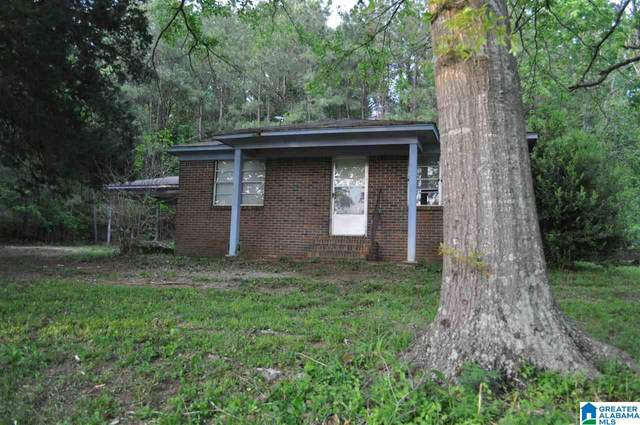 3605 Highway 82, Centreville, AL 35042 (MLS #1283852) :: Bentley Drozdowicz Group