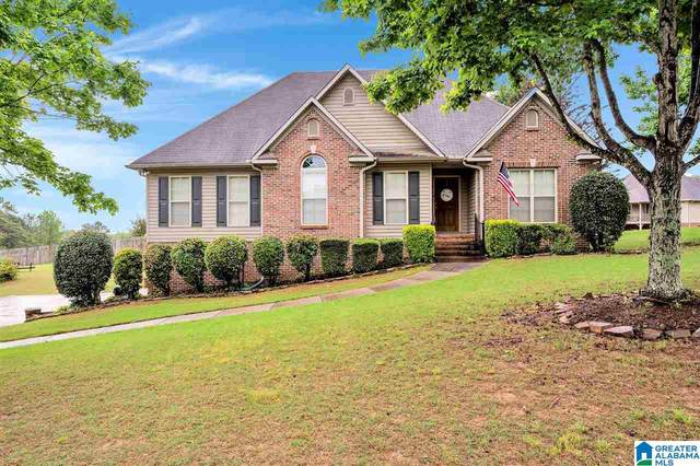 540 Mae Circle, Odenville, AL 35120 (MLS #1284313) :: Howard Whatley