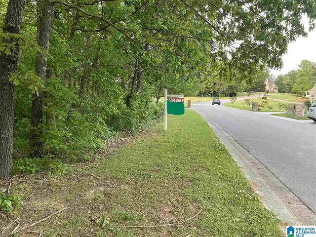 6079 William O Lane #0, Gardendale, AL 35071 (MLS #1284361) :: LocAL Realty
