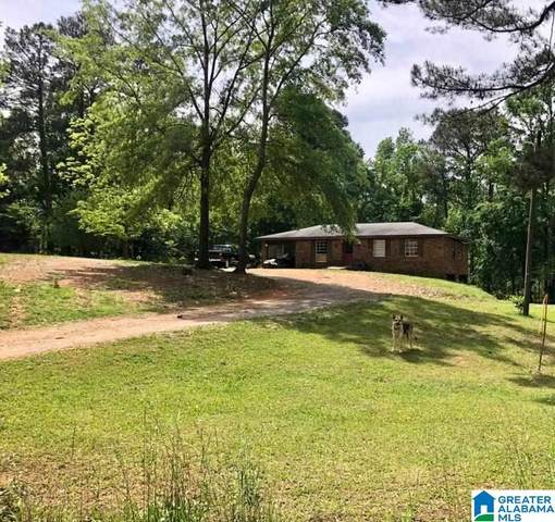 106 Donaldson Road, Columbiana, AL 35051 (MLS #1284387) :: Josh Vernon Group