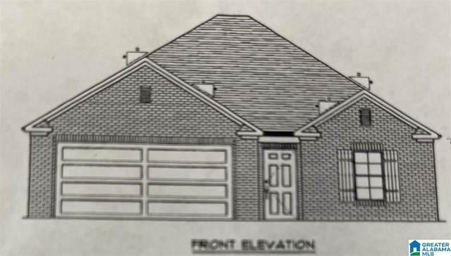 157 Trinity Lane, Oneonta, AL 35121 (MLS #1284467) :: Lux Home Group