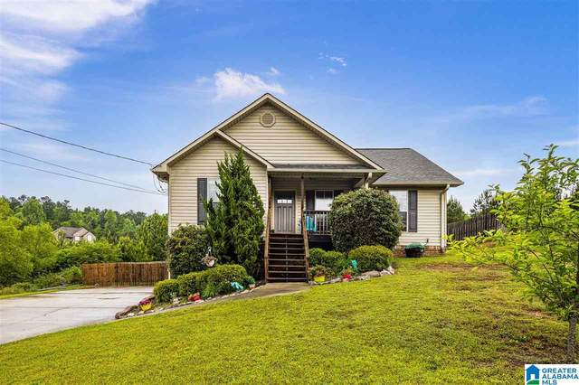 65 Starlite Circle, Odenville, AL 35120 (MLS #1284474) :: Lux Home Group